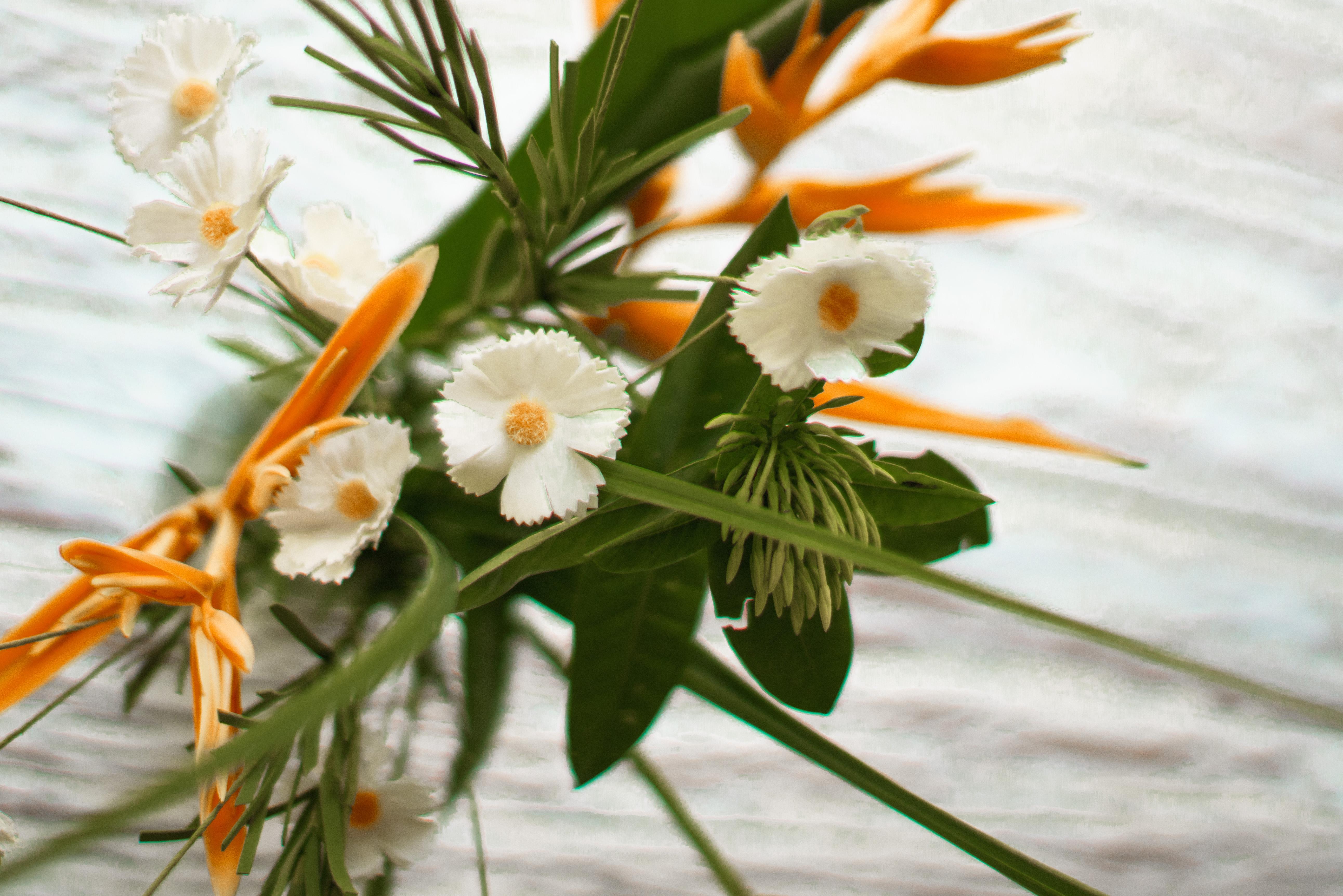 Fresh Flowers Everywhere